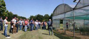 Visite des essais semences potagères de la FNAMS